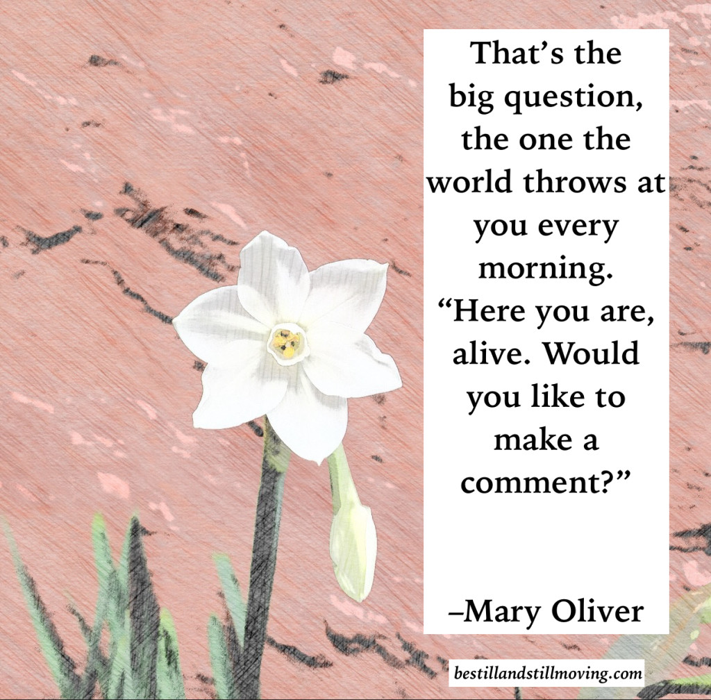 mary oliver, would you like to make a comment